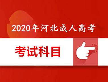 2020年河北成人高考考试科目